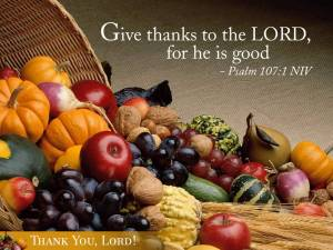 I challenge you to Give Thanks Every Day in November!